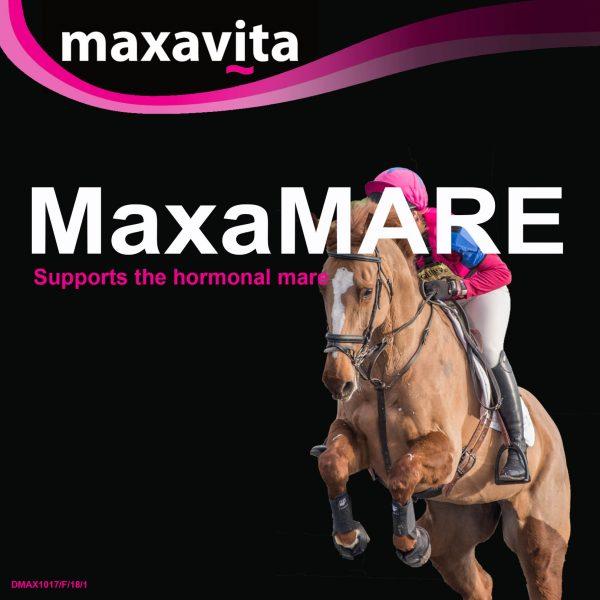 MaxaMare Front
